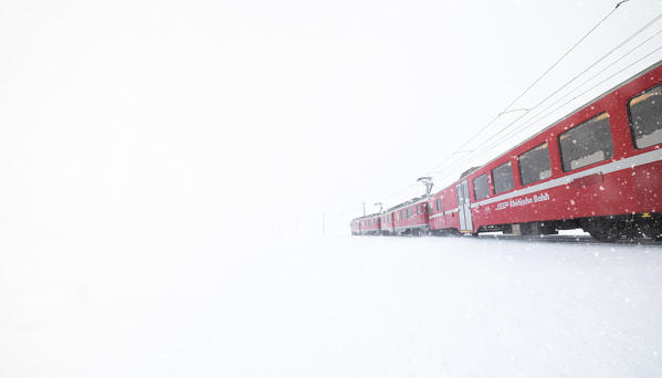 Snowflakes falling on Bernina Express train during a winter blizzard, Bernina Pass, Graubunden canton, Engadine, Switzerland