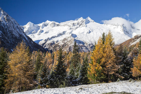 Cima di Vezzeda and Cima di Rosso covered with snow in autumn Entova Alp Malenco Valley Sondrio province Valtellina Lombardy Italy Europe