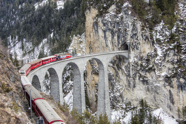 Bernina Express passes through Landwasser Viadukt and snowy woods Filisur Canton of Grisons Switzerland Europe
