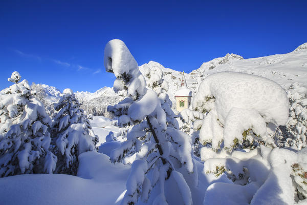 The bell tower submerged by snow surrounded by woods Maloja Canton of Graubünden Engadine Switzerland Europe