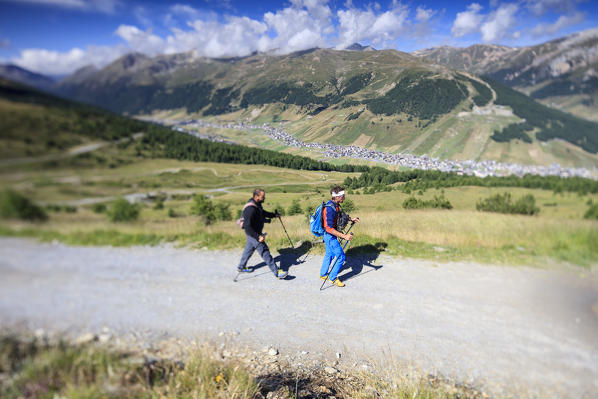 Hikers walking along the path Minor Valley Livigno High Valtellina Lombardy Italy Europe