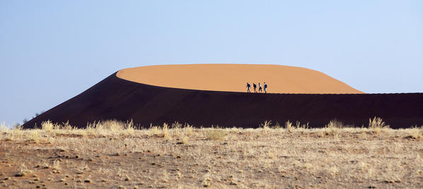 Tourists walking on the sand dunes shaped by the wind Deadvlei Sossusvlei Namib Desert Naukluft National Park in Namibia Africa
