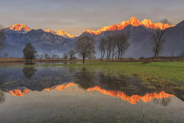 Natural reserve of Pian di Spagna  flooded with snowy peaks reflected in the water at sunset  Valtellina Lombardy Italy Europe