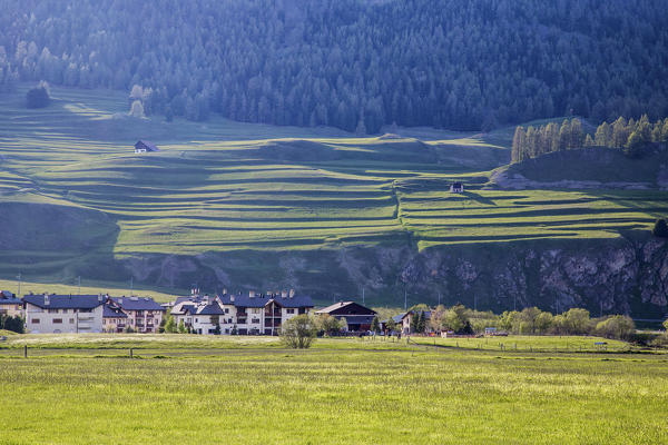 Green meadows and woods frame the village of Silvaplana Canton of Graubünden Maloja Engadine Switzerland Europe