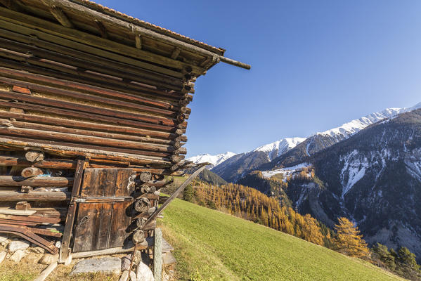 Wooden cabin surrounded by colorful woods and snowy peaks Schmitten Albula District Canton of Graubünden Switzerland Europe