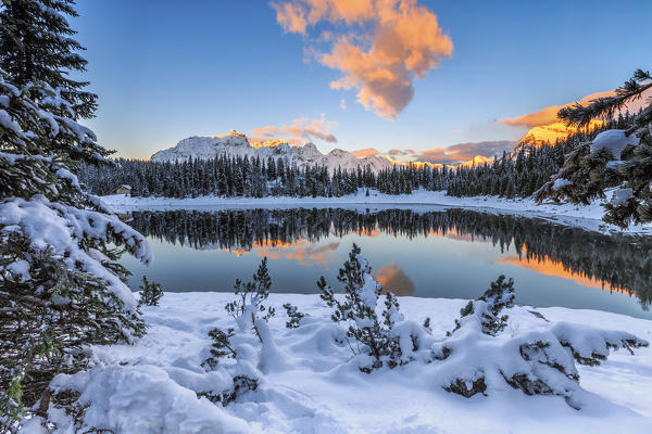 The colors of dawn on the snowy peaks and woods reflected in Palù Lake Malenco Valley Valtellina Lombardy Italy Europe