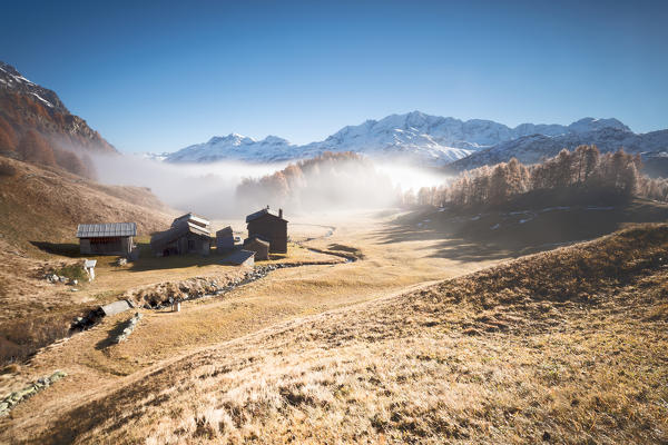 Morning fog on the mountain huts of Buaira framed by snowy peaks Sils Maloja Canton of Graubünden Engadine Switzerland Europe