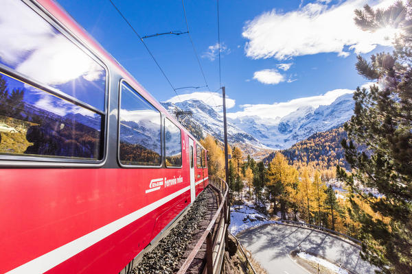 Bernina Express train surrounded by colorful woods and snowy peaks Bernina Pass Canton of Graubünden Engadin Switzerland Europe