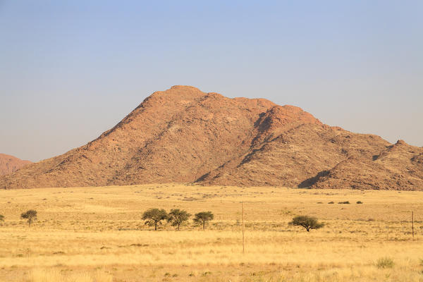 Isolated trees in the arid land framed by granite red rocks Sesriem Area Naukluft Mountains Namib Desert Namibia Southern Africa