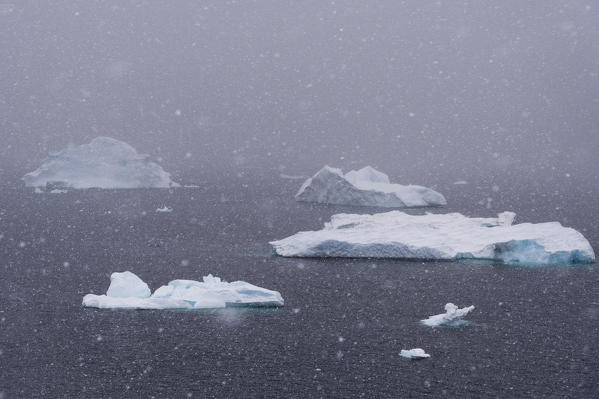 Snowstorm over icebergs in Portal Point, Antarctica.