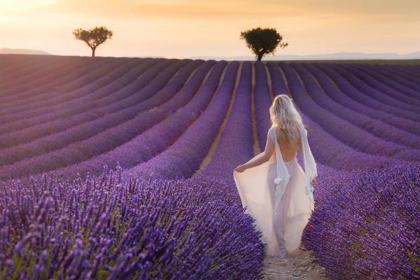 Image result for white dress lavender field