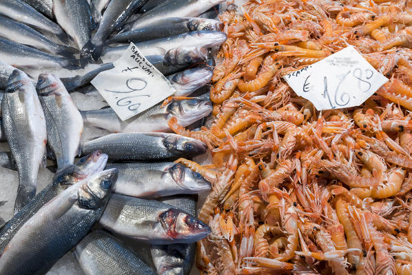High quality images of 'seafood' for sale