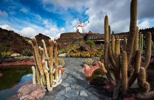 Jardin De Cactus Designed By Cesar Manrique Lanzarote Canary Island